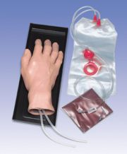 W44600_01_Iv-Training-Hand.jpg